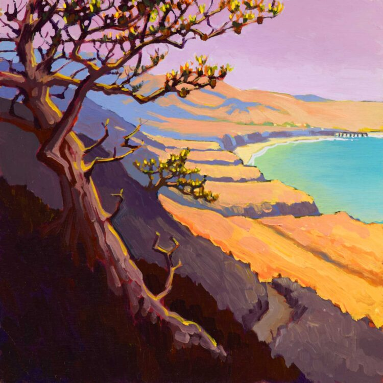 Plein air artwork of a torrey pine tree over Becher's Bay on Santa Rosa island off the coast of southern California