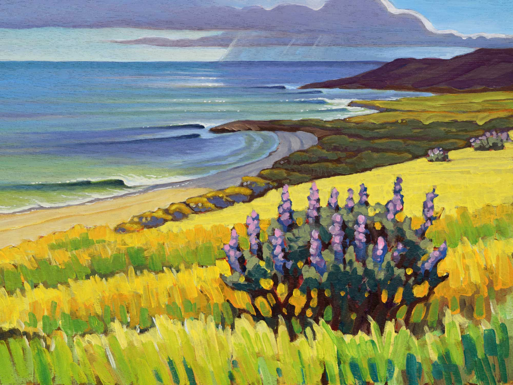 Plein air painting of East Point area of Santa Rosa island in the Channel Islands off the coast of Southern California